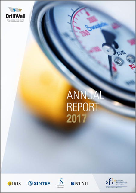 picture annual report 2017